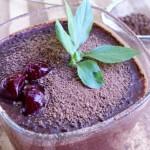 Čokoladni šejk sa višnjama